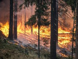 risque-tres-severe-de-feux-d-espaces-naturels-dans-l-eure-le-prefet-appelle-a-la-vigilance-de-tous_large-1