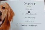 coup-dog